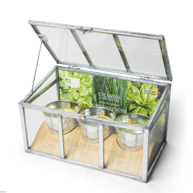 un petit jardin sain lorraine magazine. Black Bedroom Furniture Sets. Home Design Ideas